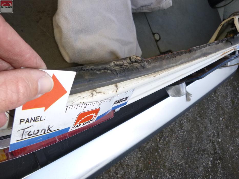 trunk seal cracking