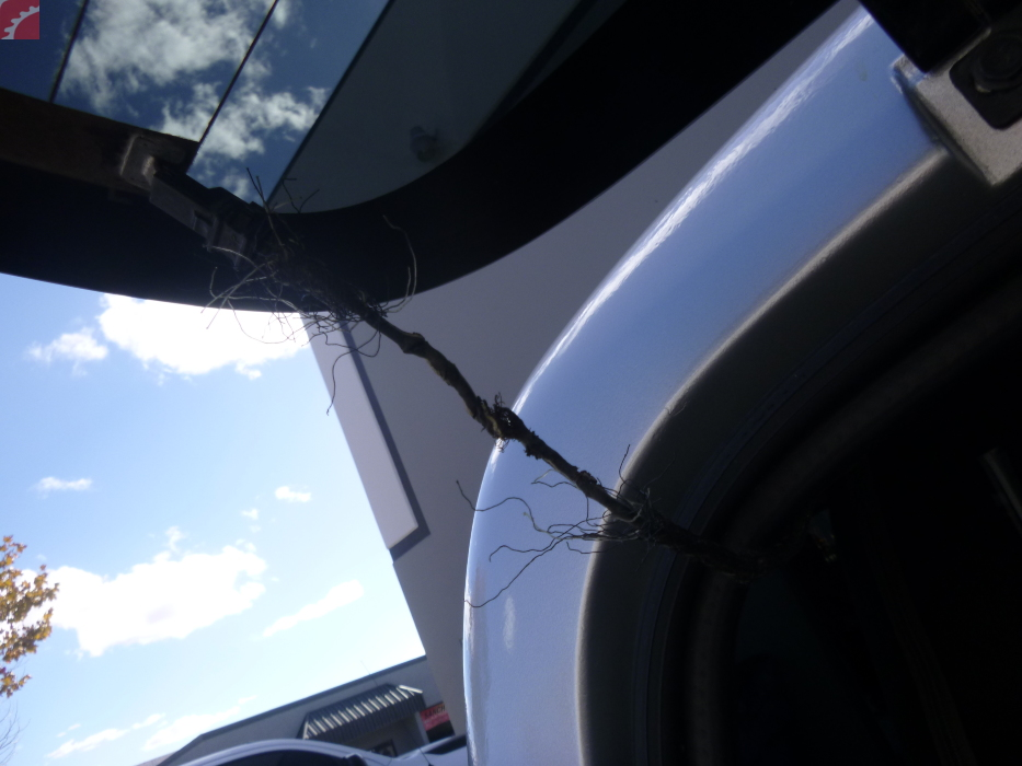 wiring to rear defroster broken