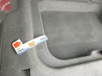 Bad odor in trunk
