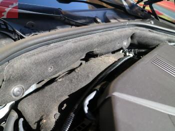 RODENT DAMAGE ENGINE INSULATION